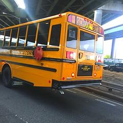 2017 Thomas SafTLiner C2, Pioneer Transportation Corp, Bus#785.