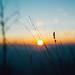 my senses reeled V [explored] by culuthilwen