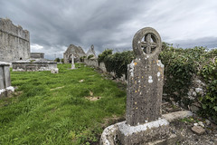 Ardfert Abbey