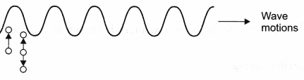 ncert-class-9-science-lab-manual-velocity-of-a-pulse-in-slinky-6