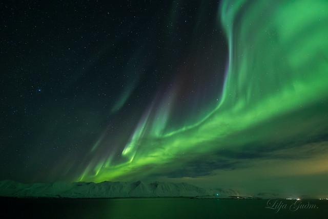 Aurorar Borialis  Eyjafjordur.