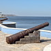 The two cannons by Chemose
