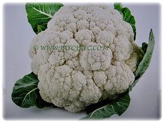 Edible white flesh or curds of Brassica oleracea var. botrytis (Cauliflower, Broccoli, Calabrese, Romanesco), Feb 23 2018
