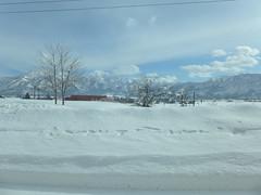 一面の雪景色の中を走る