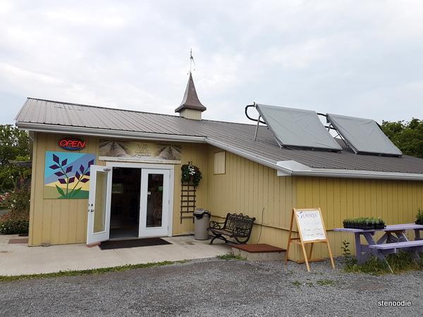 Prince Edward County Lavender shop
