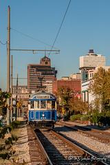 MATA 455 | Melbourne Trolley | MATA Riverfront Loop