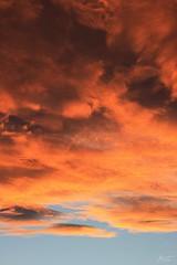 Ciel vespéral au dessus du Saint-Laurent