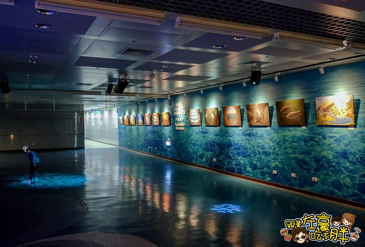 屏東生技園區國際級水族展示廳-12