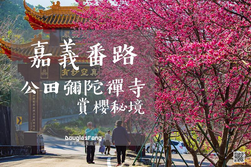【遊記】嘉義番路公田彌陀禪寺賞櫻花 (1)