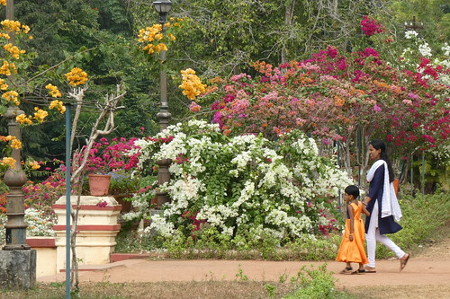 India - Kerala - Hill Palace, Tripunithura - in the garden