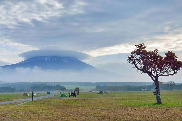 Mountain Fuji,富士山,朝霧高原
