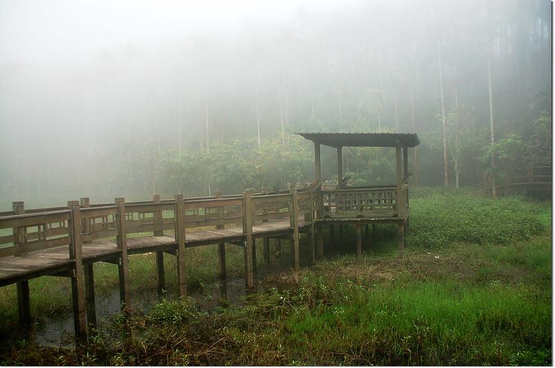 李子園天池 4