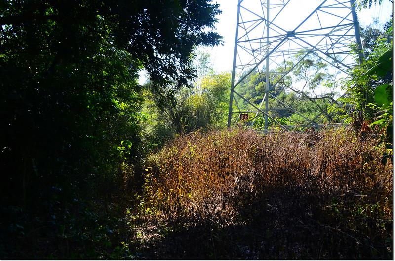 大山坑山高壓輸電塔 2