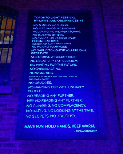 Select By-laws and Ordinances #toronto #tolightfest #distillerydistrict #latergram