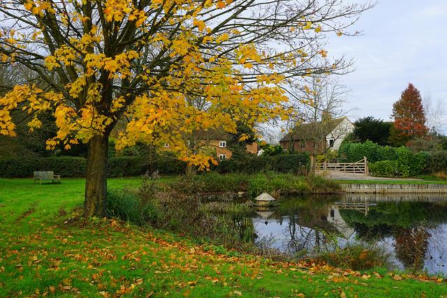 The village pond at Milton Bryan
