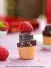 Cupcake Fudge 3 by Bitter-Sweet-