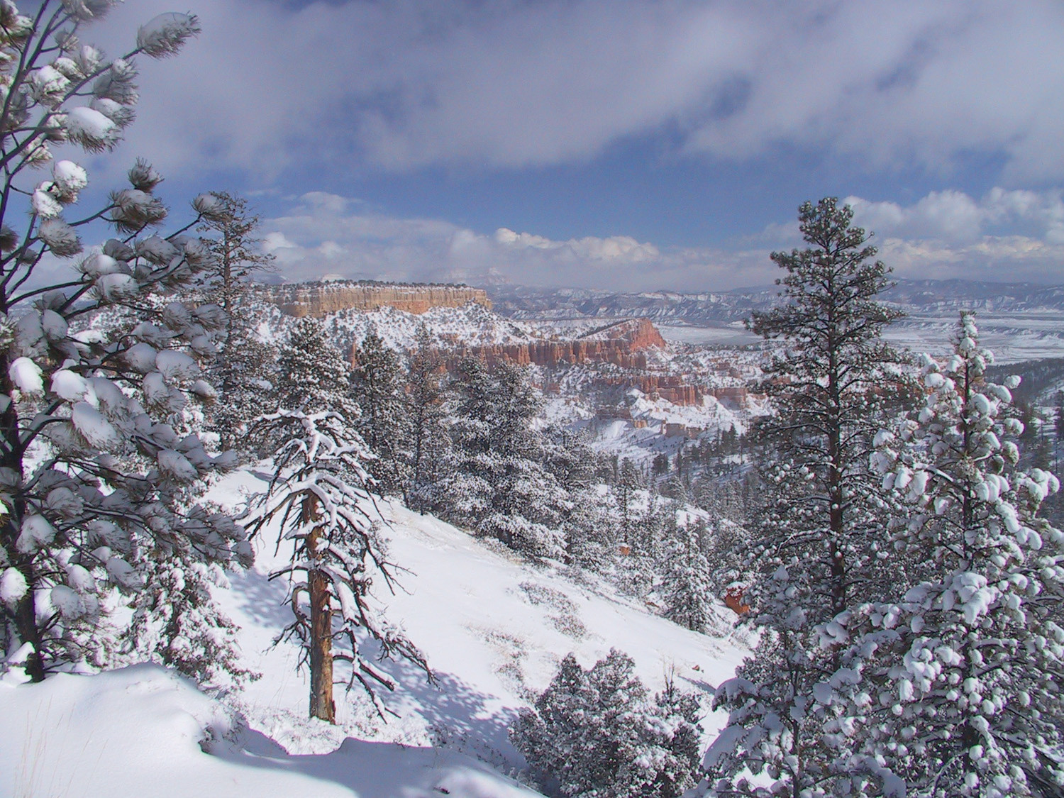 A winter storm at Bryce Canyon.