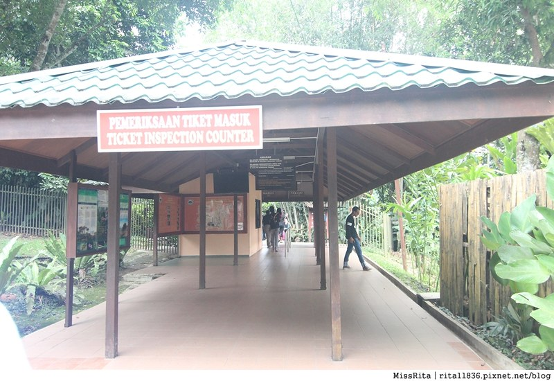馬來西亞自由行 馬來西亞 沙巴 沙巴自由行 沙巴神山 神山公園 KinabaluPark Nabalu PORINGHOTSPRINGS 亞庇 波令溫泉 klook 客路 客路沙巴 客路自由行 客路沙巴行程48
