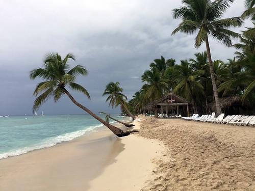 106 - Isla Saona