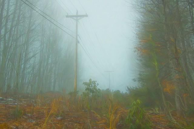 Misty lines 3