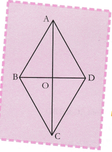 cbse-class-9-maths-lab-manual-comparison-of-diagonals-in-different-quadrilaterals-5