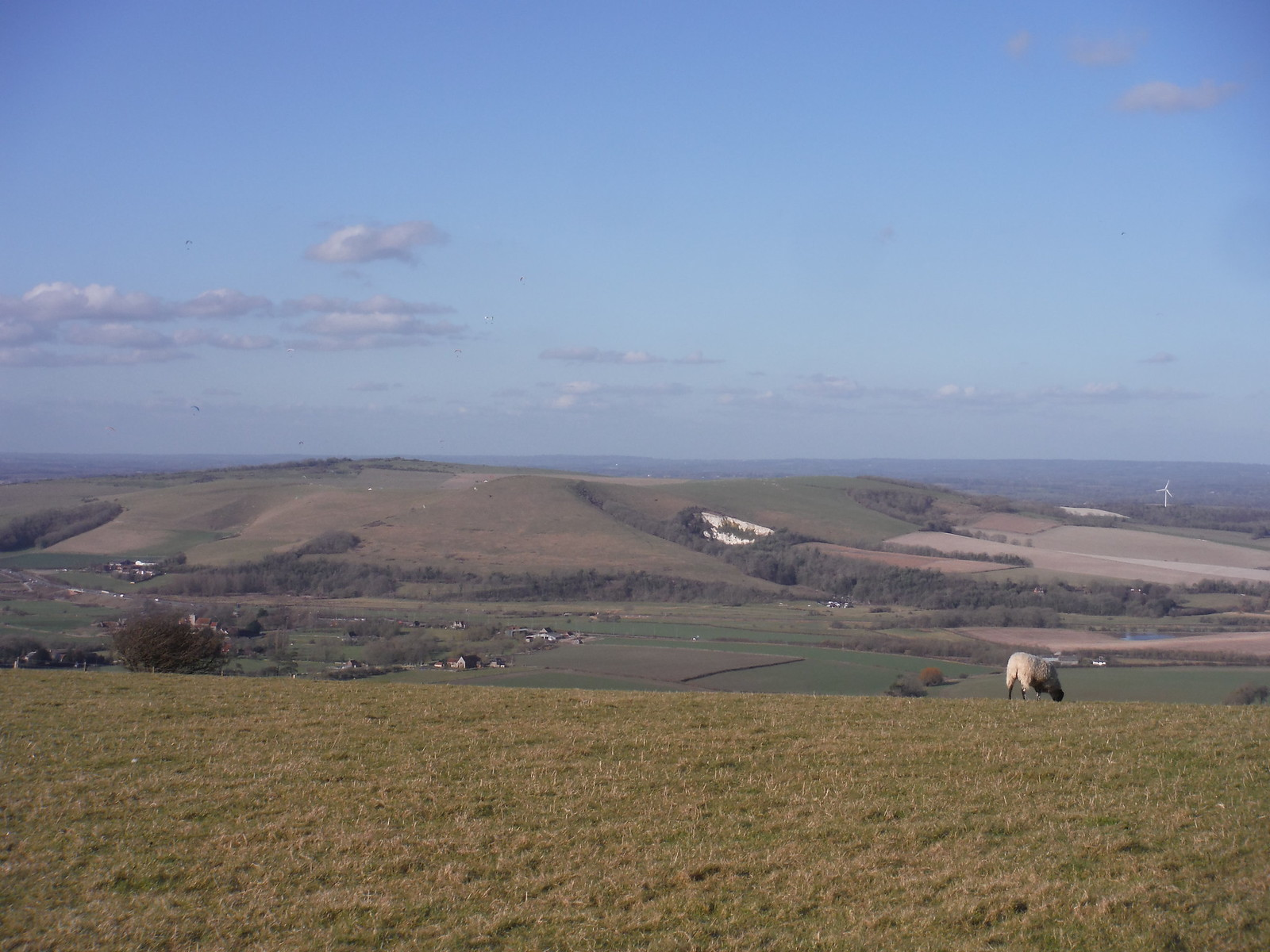 Mount Caburn from South Downs Ridge SWC Walk 181 - Lewes to Seaford via West Firle
