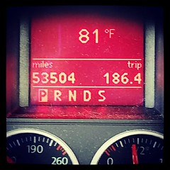 @genmae5 just sent me this photo. February 20th and it's 81° outside.