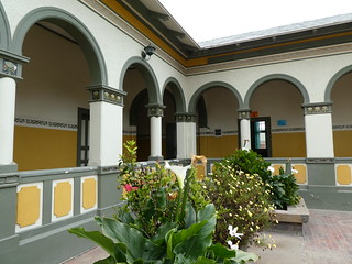 20180110 Woermann House courtyard plants