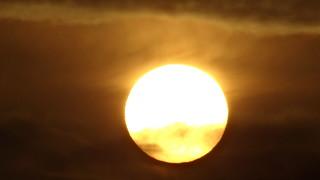 Willkommen an der Himmelspforte der freche Vogel flattert zum Sonnenaufgang 00351