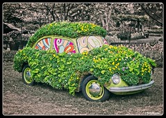 Decorated Volkswagen