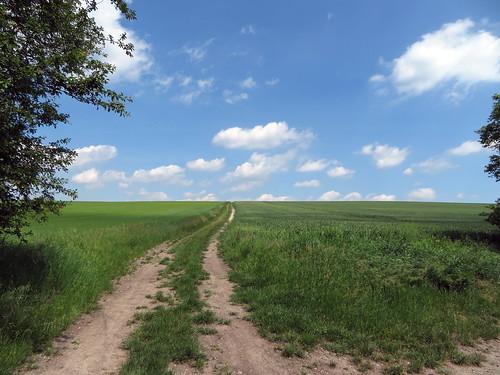 20170601 05 170 Regia Wolken Weg Feld