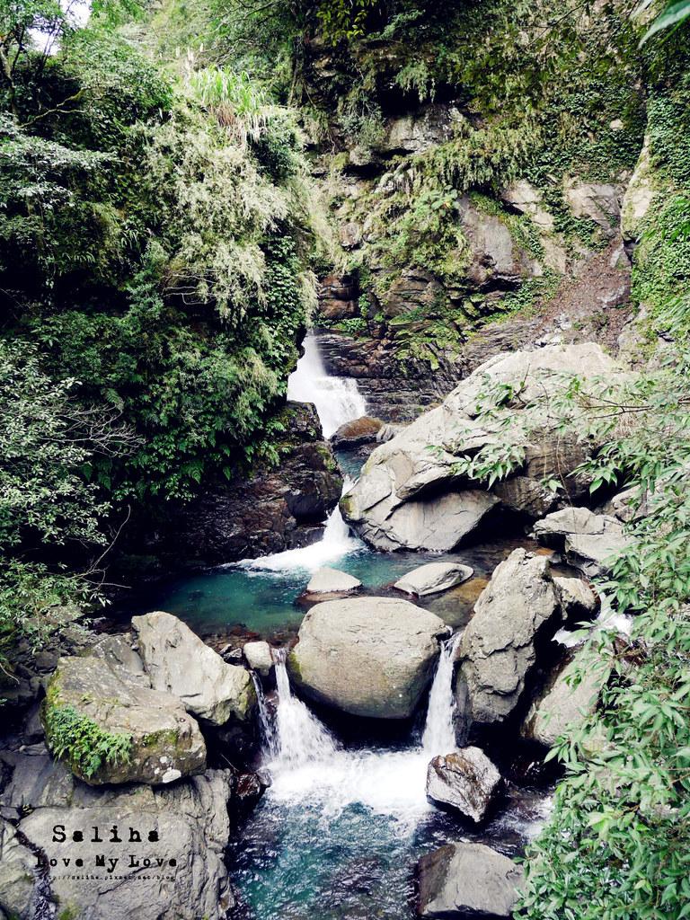 新北三峽一日遊踏青景點推薦滿月圓森林遊樂區瀑布