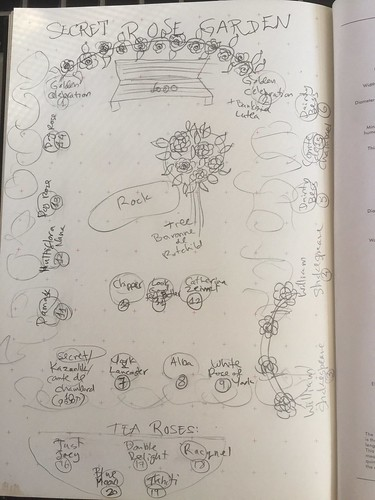 Rose Garden Sketch