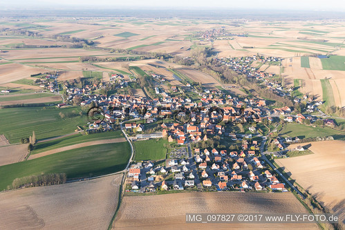 Trimbach (1.01 km South-West) - IMG_097827
