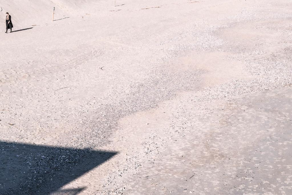 Edisto beach_DSF1149 1
