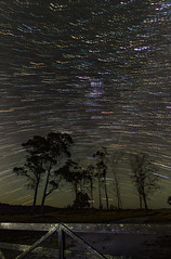 Star trails in Tasmania