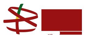 Boston Portuguese Festival logo