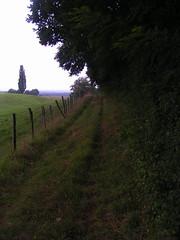 20070903 13034 0710 Jakobus Weg Wiese Wald Zaun Baum