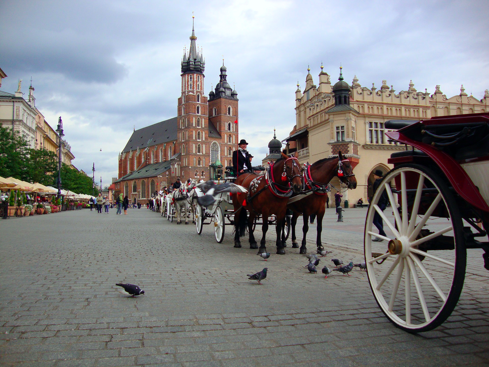 Qué ver en Cracovia, Krakow, Polonia, Poland qué ver en cracovia - 25591729627 bddbe381a5 o - Qué ver en Cracovia, Polonia
