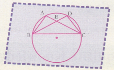 cbse-class-9-maths-lab-manual-angles-in-the-same-segment-10