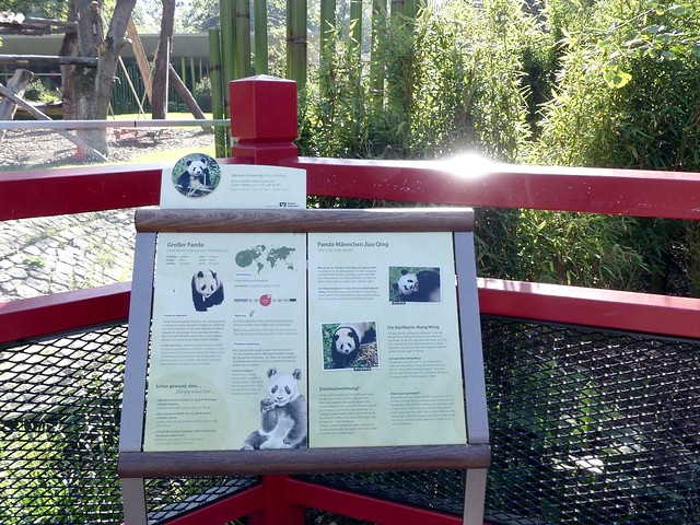 Pandagehege, Zoo Berlin