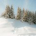 snow by Pig Pang