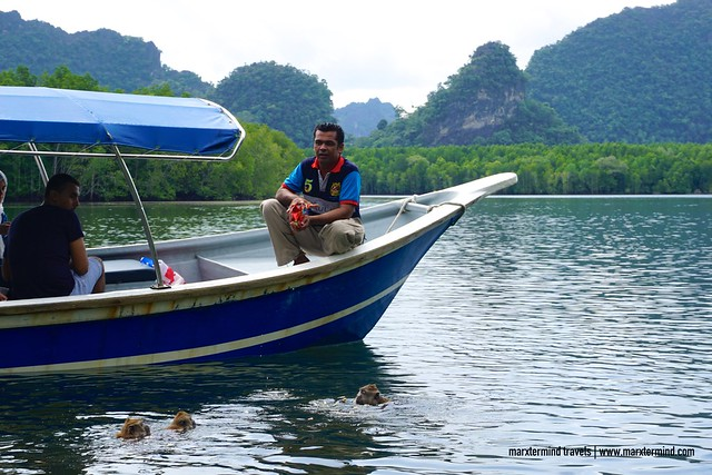 Kilim Geo Park and Mangrove Tour Langkawi