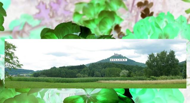 Zollern, Fujifilm FinePix S2950