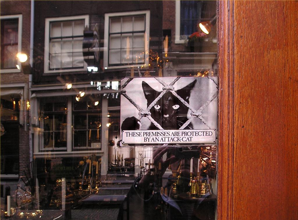Envoi De Colis Au Pays Bas