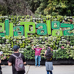 Lollapalooza-1