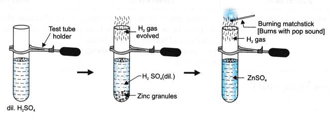 ncert-class-9-science-lab-manual-types-of-reactions-and-changes-10