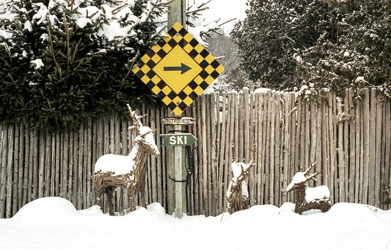 Deer By the Sign