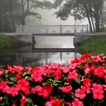 Sat, 07/19/2014 - 8:04pm - Glen Miller Park, Richmond, IN