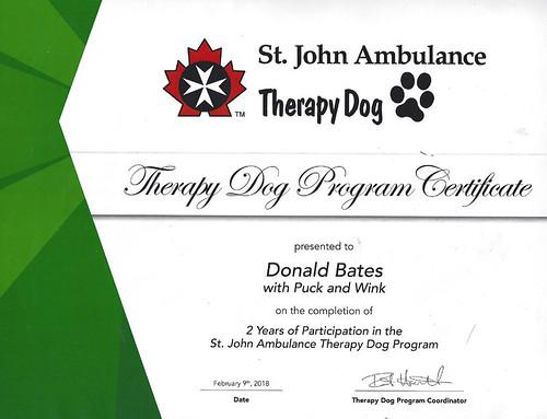 SJA Service Dogs